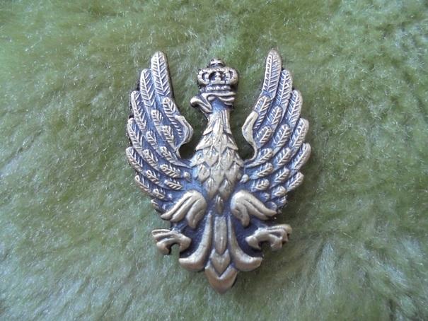 KORPUSÓWKA GENERALSKA - kolor srebrny